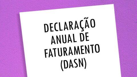 Declaração de Imposto de Renda do MEI (DASN)
